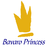 Bavaro Princess Resort icon