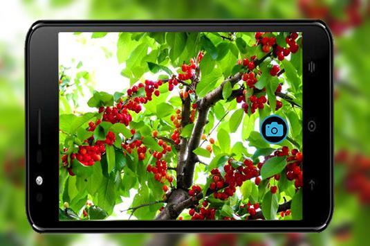 Sweet Selfie HD-Camera For HTC screenshot 2