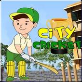City Cricket icon