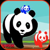 Panda Bear Games Free for Kids icon