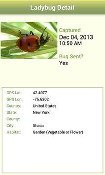 Lost Ladybug apk screenshot