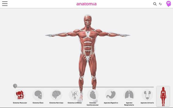 Anatomía 360 screenshot 5