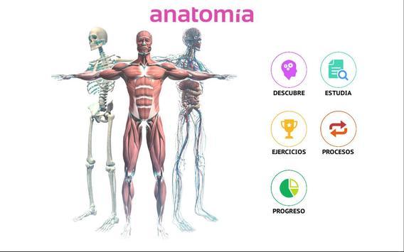 Anatomía 360 screenshot 6