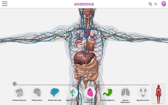 Anatomía 360 screenshot 7