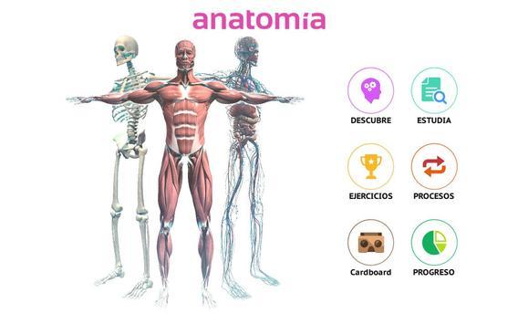 Anatomía 360 screenshot 9