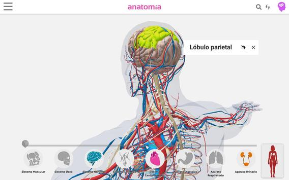Anatomía 360 screenshot 13
