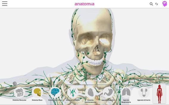 Anatomía 360 screenshot 14