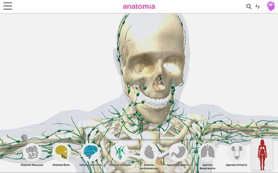 Anatomía 360 screenshot 21