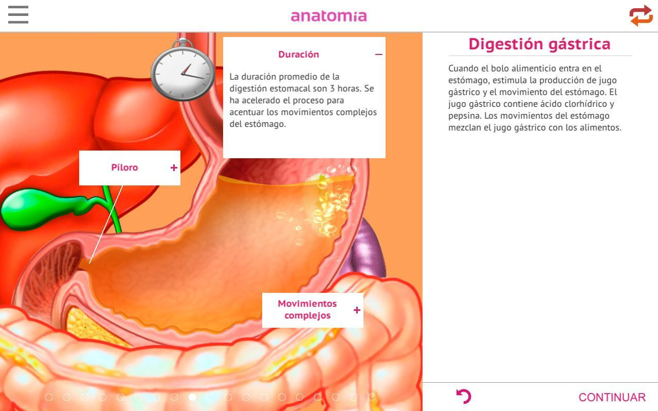 Anatomía 360 for Android - APK Download