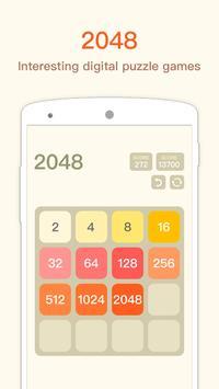 2048_pro poster