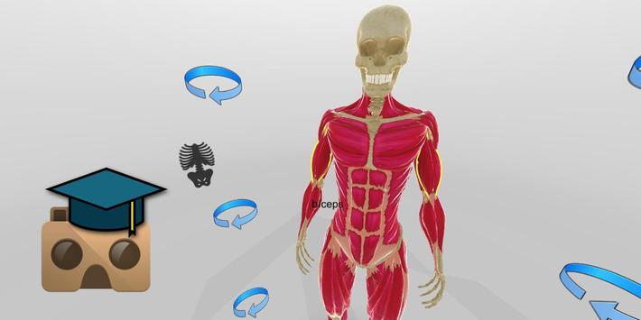 Anatomía VR Descarga APK - Gratis Educación Aplicación para Android ...