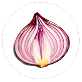 Onion Search Engine icon