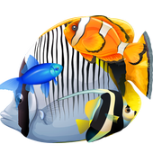 Only Fish icon
