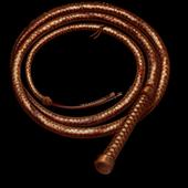 Whip Master icon