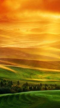 HD Oppo F11/Reno Wallpapers screenshot 5