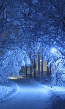 Snow Night City Live HD Wallpaper Theme apk screenshot