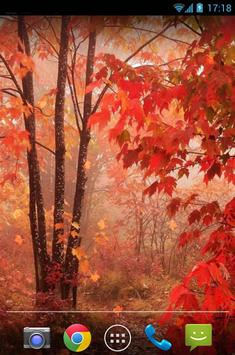 Maple Leaves Live Wallpaper apk screenshot