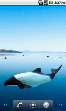 Dolphin Commerson's Sticker apk screenshot