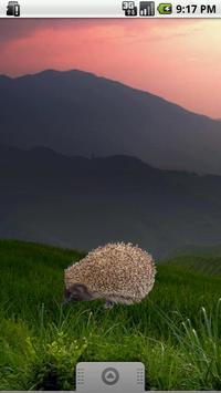 Hedgehog Sticker screenshot 1