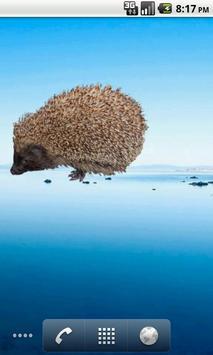 Hedgehog Sticker screenshot 2