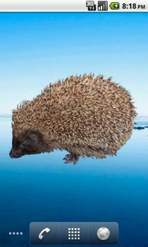 Hedgehog Sticker screenshot 3