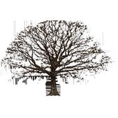 Oak Tree Winter Sticker icon