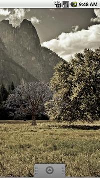 Oak Tree Winter Sticker screenshot 1