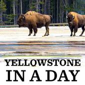 Yellowstone in a Day icon