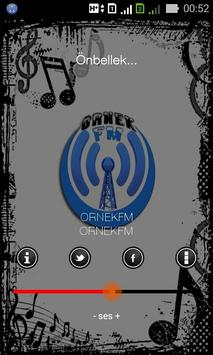 Örnek Radyo poster