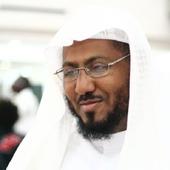 Holy Quran -Khaled Abdelkafi icon