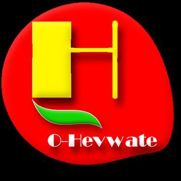 O-Ferhenga Kurdî-Kurdî (Hevwateyî) poster