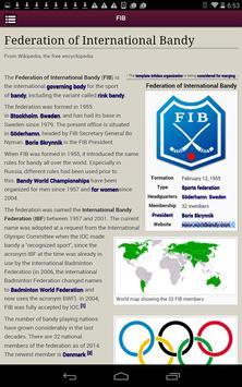 International Bandy screenshot 13