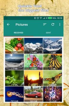 WhatsFile screenshot 2
