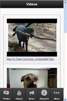 Dog Training Secrets apk screenshot