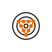 PONGConnect icon