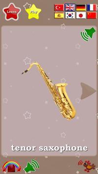 Musical Instruments Cards screenshot 18