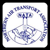 NATA 41 icon