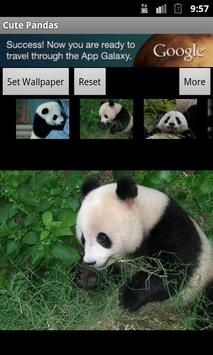 Cute Pandas wallpaper apk screenshot