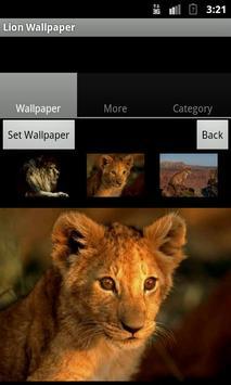 Lion Wallpaper apk screenshot