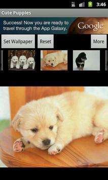 Cute Puppies Wallpaper screenshot 4