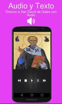 Oracion a San David de Gales con Audio poster