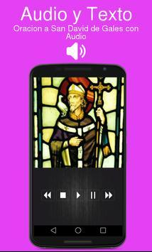 Oracion a San David de Gales con Audio screenshot 1