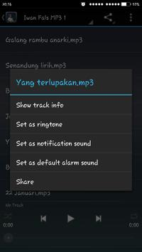 Top Iwan Fals MP3 screenshot 2