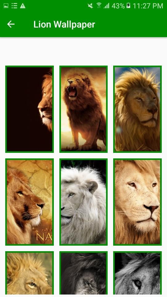 9500 Koleksi Gambar Wallpaper Binatang Buas Gratis
