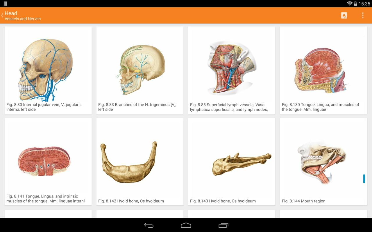 Sobotta Anatomy For Android Apk Download