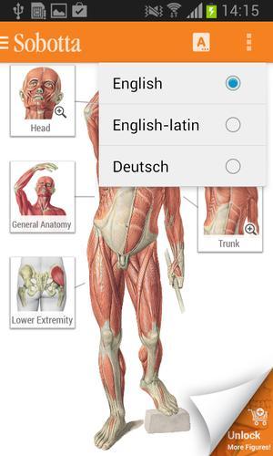 Sobotta Anatomie APK-Download - Kostenlos Medizin APP für Android ...
