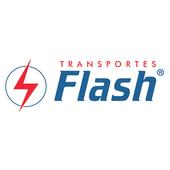 FLASH CORPORATE icon