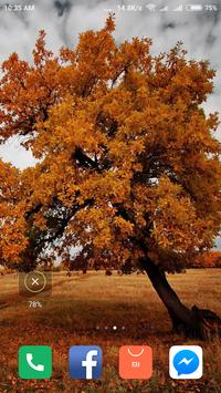 Autumn Wallpaper screenshot 11