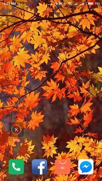 Autumn Wallpaper screenshot 12