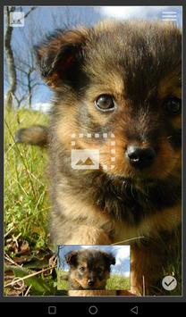 GIF Live Wallpaper apk screenshot